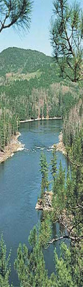 List of french river fishing lodges and resorts ontario for Ontario fishing lodges and resorts